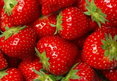 Лечебни свойства на ягодите